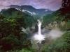 Бразилия. Дождевые леса Амазонки