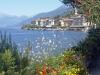 Италия. Озеро Комо-3