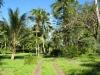 Сады Терстона (Thurston Gardens) 2