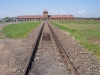 Польша. Освенцим (3)
