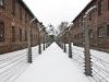 Польша. Освенцим (4)