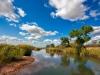 ЮАР. Национальный парк Крюгер (1)