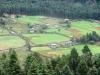 Бутан. Бумтангская долина - 3