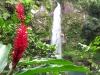 Фиджи. Водопады Таворо (2)