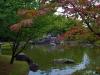 Хассельт. Японский сад