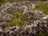 Ирландия. Буррен (3)