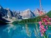 Канада. Скалистые горы (4)