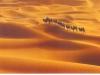 Китай. Пустыня Такла-Макан -3