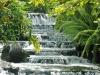 Коста-Рика. Национальный парк Ареналь -1