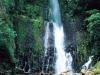 Коста-Рика. Национальный парк Корковадо -1