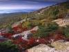 Национальный парк Акадия (США)