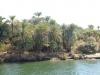 Египет. Берега Нила (2)