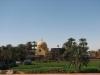 Египет. Берега Нила (3)