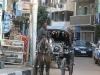Египет. Быт египтян (2)