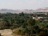 Египет. Оазис Сива (3)