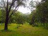 Гондурас. Ботанический сад Лансетилла (1)