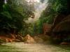 Гондурас. Ботанический сад Лансетилла (3)