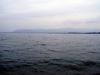 Индия. Озеро Чилика