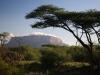 Кения. Национальный заповедник Самбуру (3)