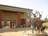 Кения. Найроби. Национальный музей (1)
