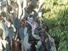 Мадагаскар. Частный заповедник Беренити (1)