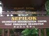 Малайзия. Центр реабилитации орангутангов Сепилок (1)
