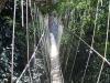 Малайзия. Национальный парк Таман Негара (3)
