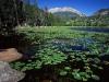 Национальный парк Роки-Маунтин
