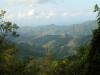 Ямайка. Голубые горы (1)