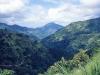 Ямайка. Голубые горы (2)