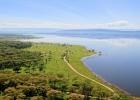 Кения. Озеро Накуру